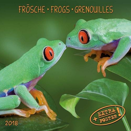 AW_Froesche_2018